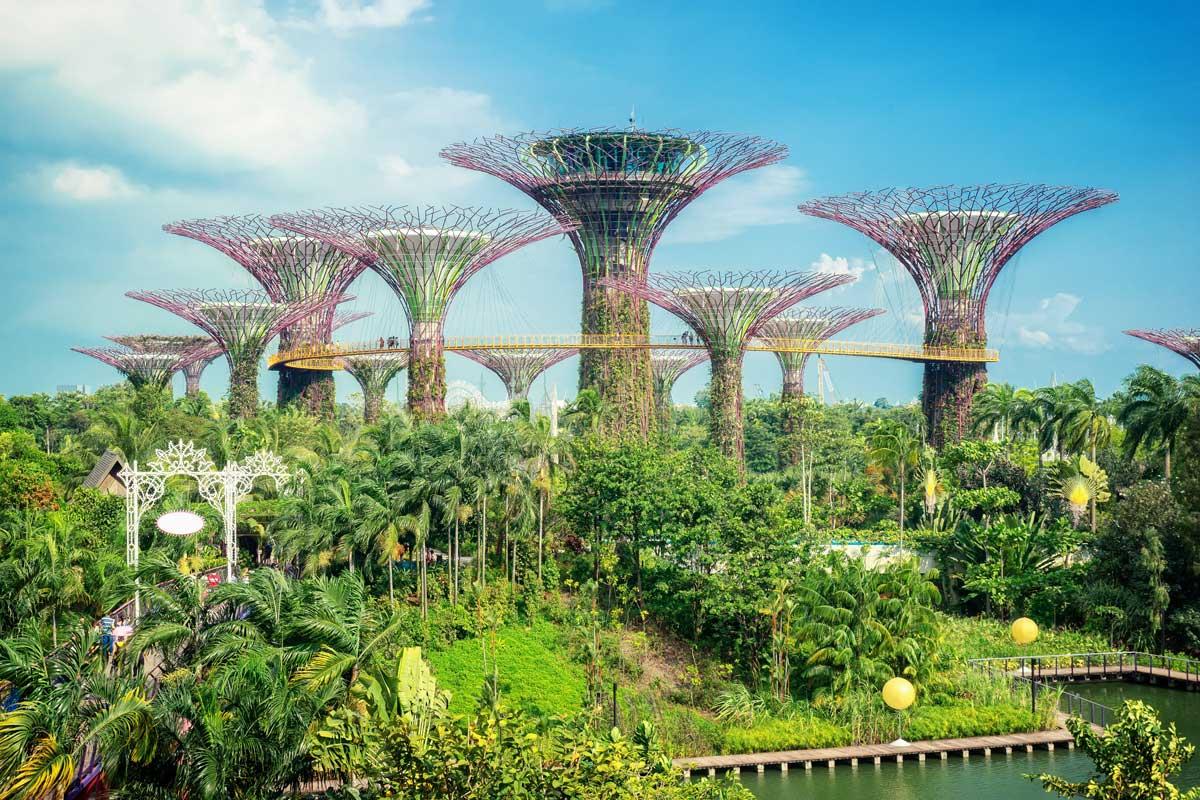Architettura Del Verde architettura-del-paesaggio-per-la-citta-singapore-oasi-green